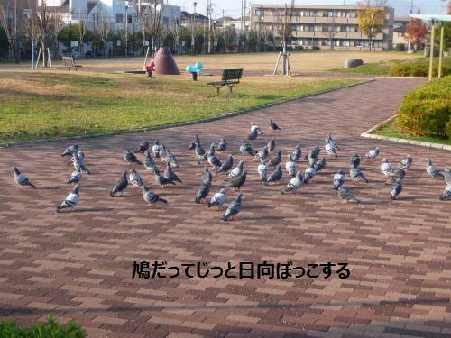 001+(3)_convert_20130109235007.jpg