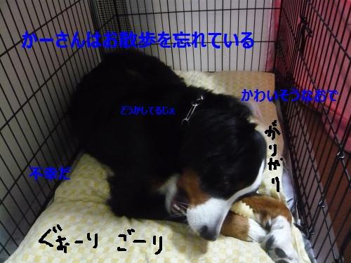 001+(3)_convert_20130204204929.jpg