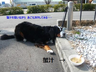 001+(3)_convert_20130313171719.jpg
