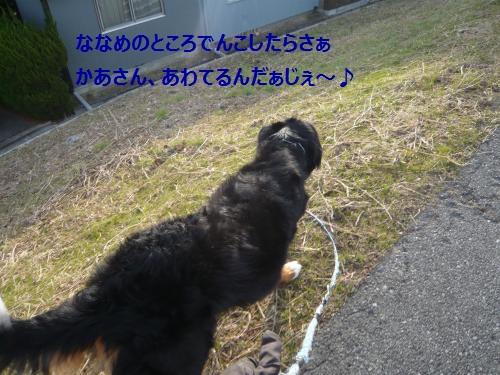 001_convert_20130109233044.jpg