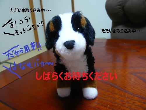 001_convert_20130124231717.jpg