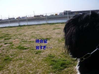 001_convert_20130402195455.jpg