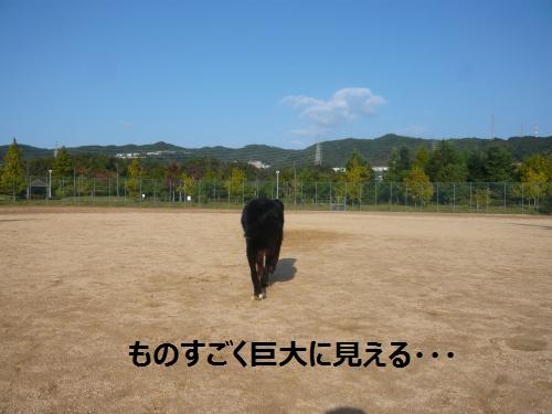 002+(2)_convert_20121031102220.jpg