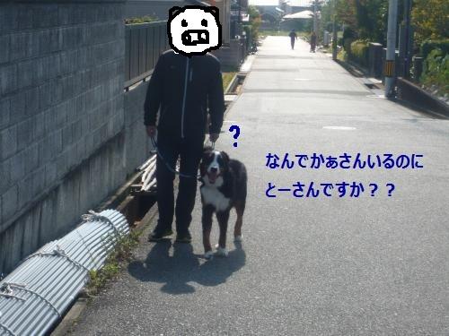 002+(3)_convert_20121106114449.jpg