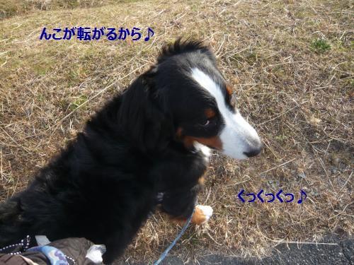 004+(2)_convert_20130109233521.jpg