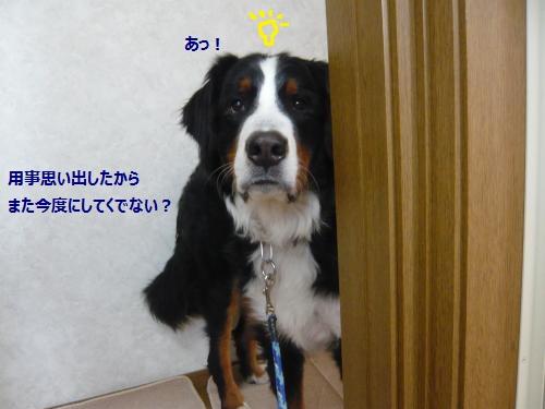 004+(2)_convert_20130124231101.jpg
