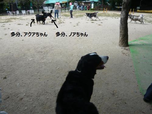 004+(3)_convert_20121004215645.jpg