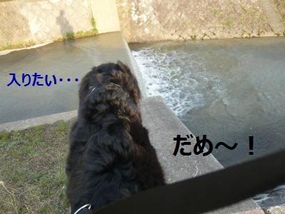004+(3)_convert_20130321224030.jpg
