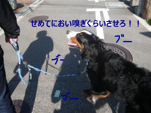 005+(2)_convert_20121106115404.jpg