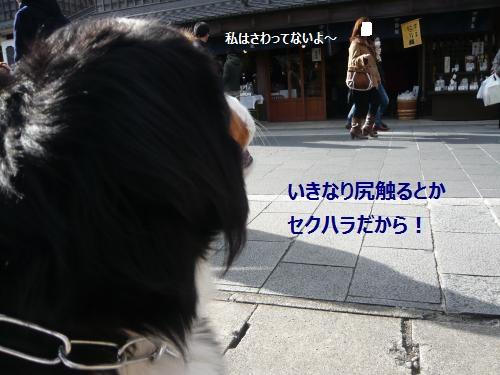 005+(2)_convert_20130112231030.jpg