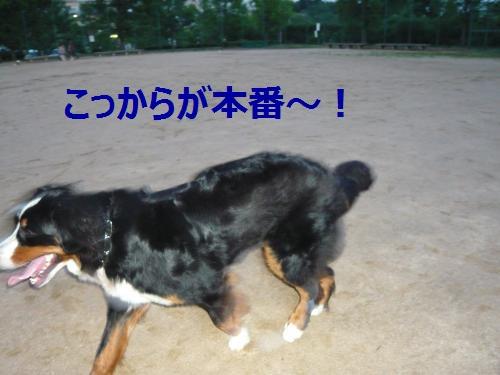 005_convert_20120703004106.jpg