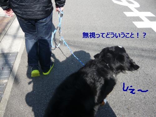 006+(2)_convert_20121106115732.jpg