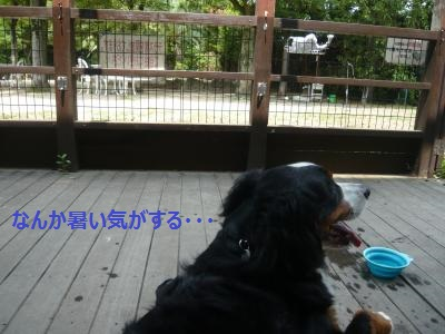 006+(3)_convert_20130619203819.jpg