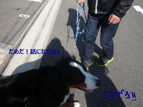 007_convert_20121106115954.jpg