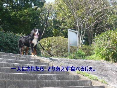 007_convert_20130405205450.jpg