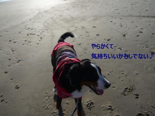 019_convert_20130112235914.jpg