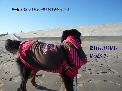 020_convert_20130113000211.jpg