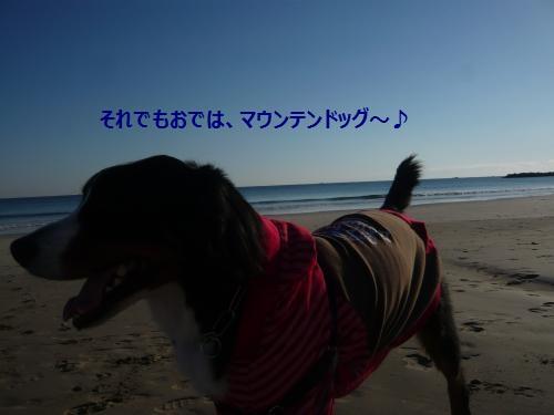 021_convert_20130113000408.jpg
