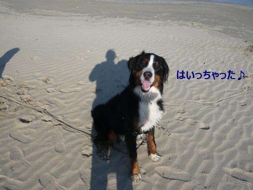 025_convert_20130113001457.jpg