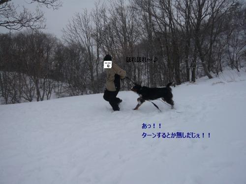 025_convert_20130212230718.jpg