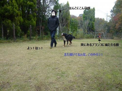 027_convert_20121204234739.jpg