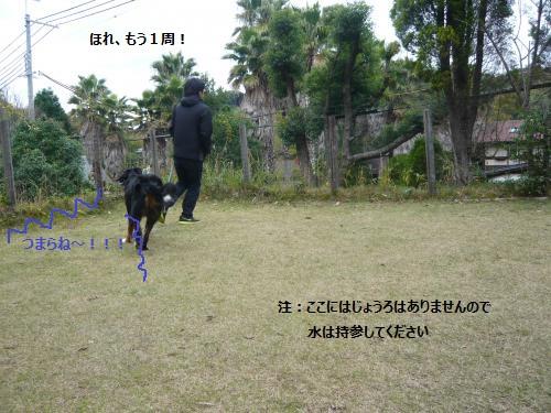 028_convert_20121204234813.jpg