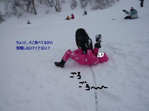 028_convert_20130212230925.jpg