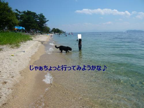 031_convert_20120828231636.jpg