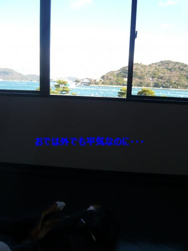 037_convert_20130114000651.jpg