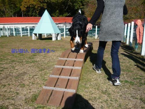 054_convert_20121206225512.jpg