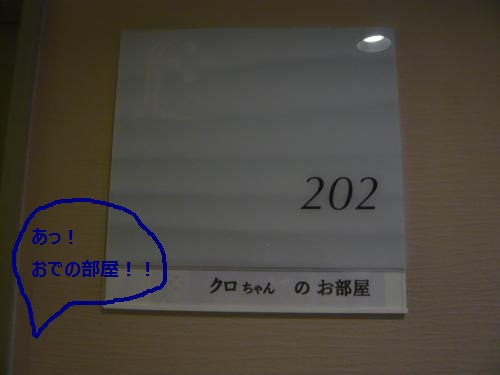 008_convert_20130112000444 (2)