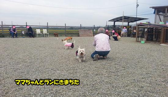 20121014_140721.jpg