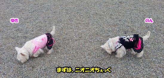 20121014_151116.jpg