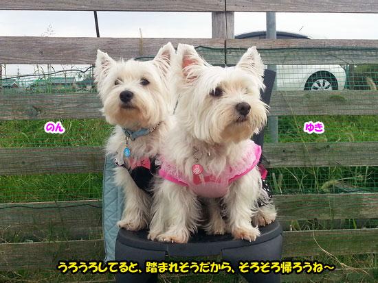 20121014_151918.jpg