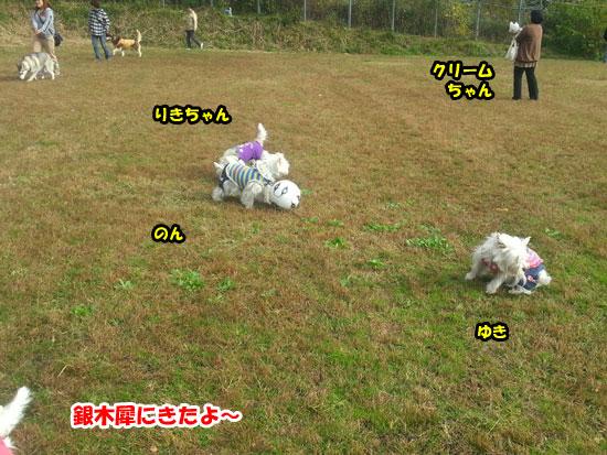 20121103_143011.jpg