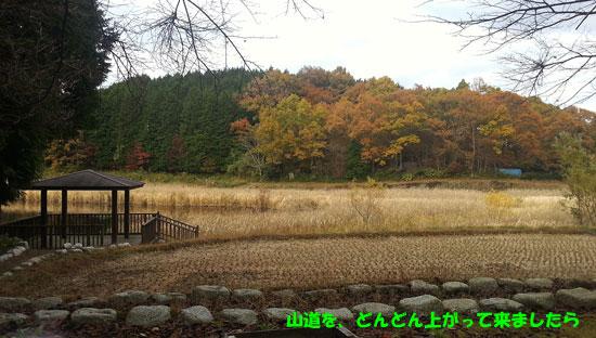20121118_145642.jpg