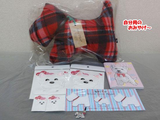 DSC00378_20121117210819.jpg