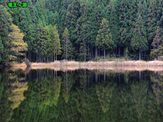 DSC00437_20121121144017.jpg