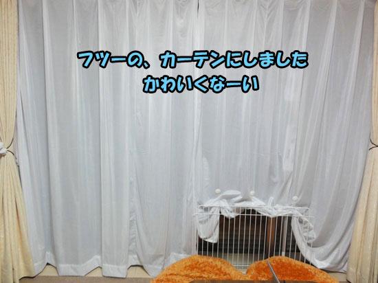DSC00769_20121221180034.jpg