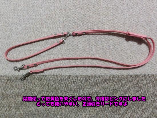 DSC00791_20121216192114.jpg
