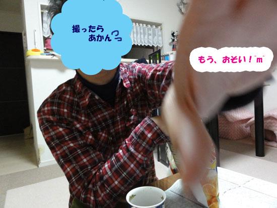 DSC01817.jpg