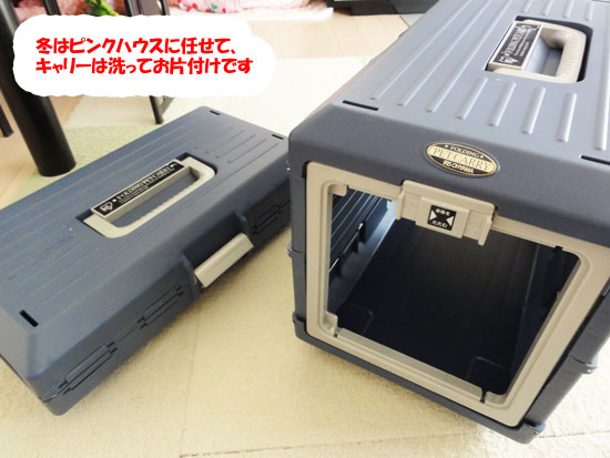 DSC09848.jpg