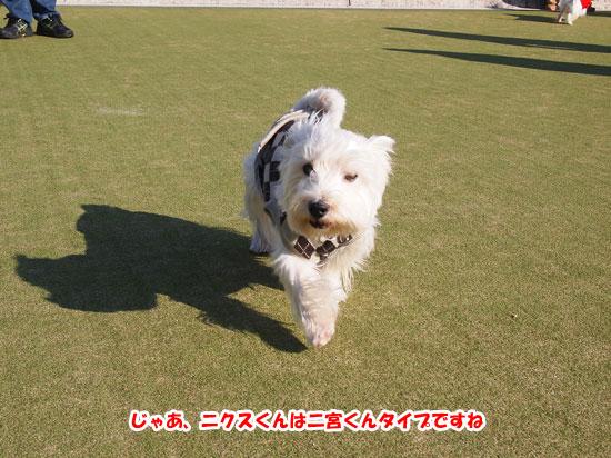 PC094550.jpg
