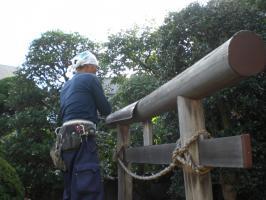 torii (7)
