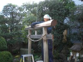 torii (11)