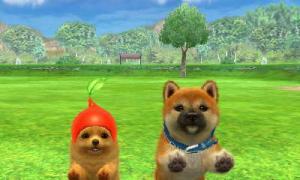 dogs0856.jpg