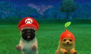 dogs0858.jpg