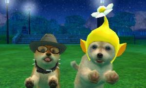 dogs0860.jpg