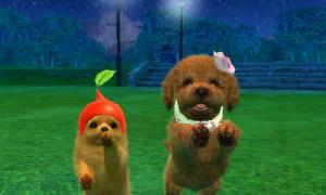 dogs0869.jpg