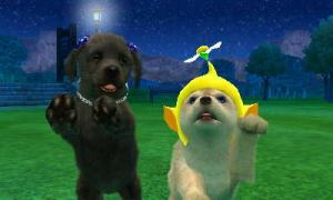 dogs0870.jpg